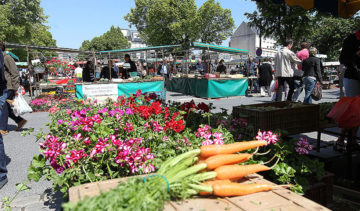 marché de Saint-Quentin derrière l'Hôtel de Ville