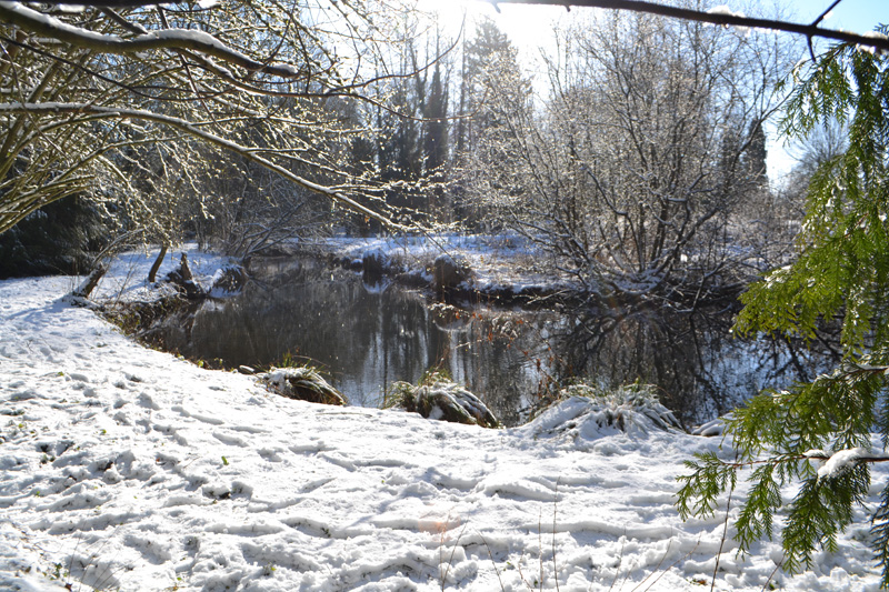 weekend insolite en hiver balade sous la neige