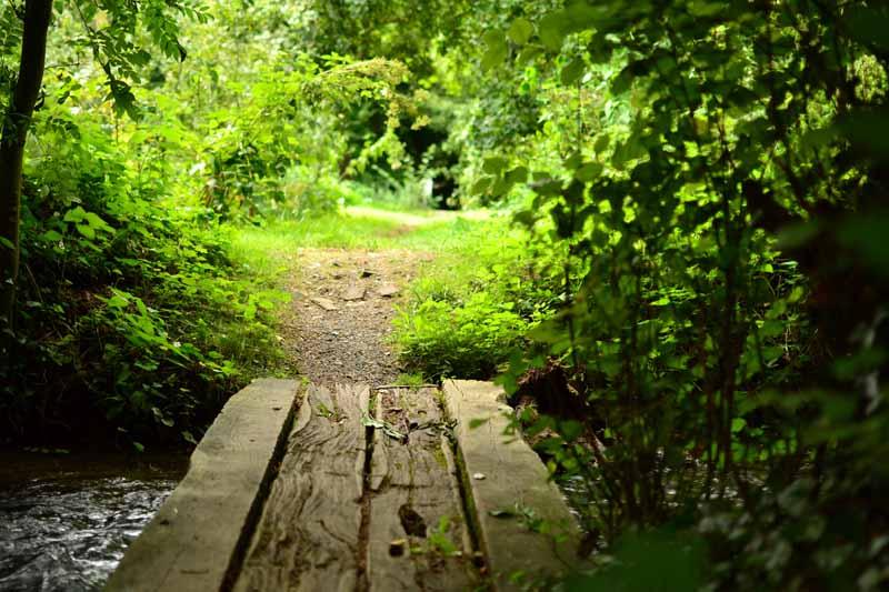 pont-ruisseau-maison-omignon