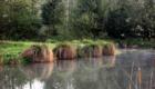 omignon-riviere