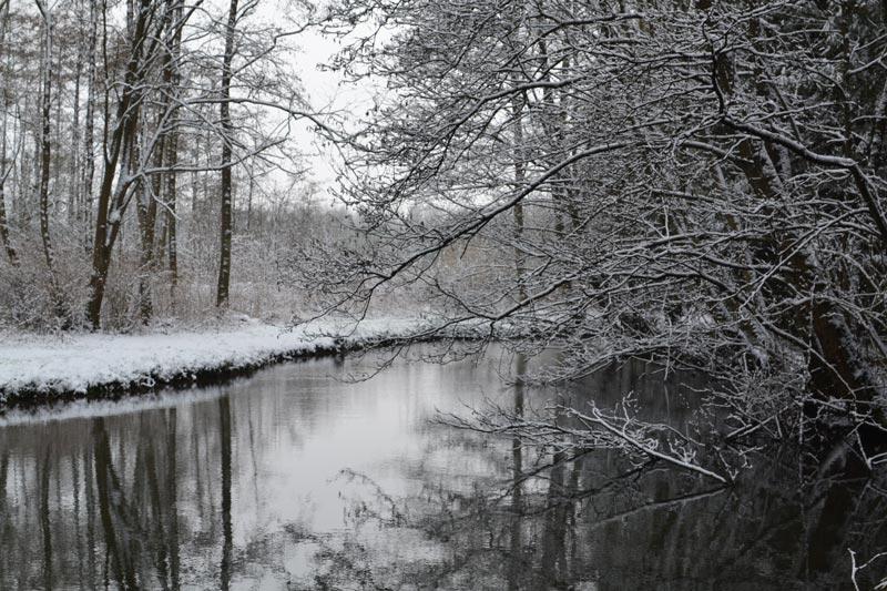 hiver neige à la maison de l'omignon