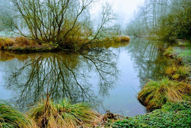 La rivière Omignon en Février à Vermand