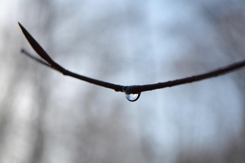 remède au blues hivernal aimer la pluie