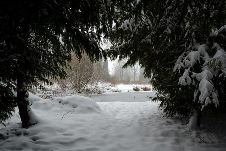 sentiment scandinave sous la neige à vermand dans les hauts-de-france