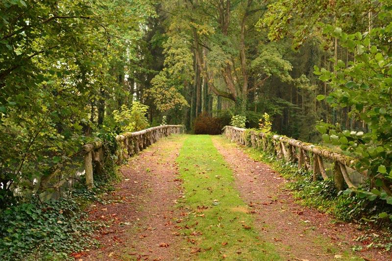 domaine de vadancourt parc arboré et pont romantique