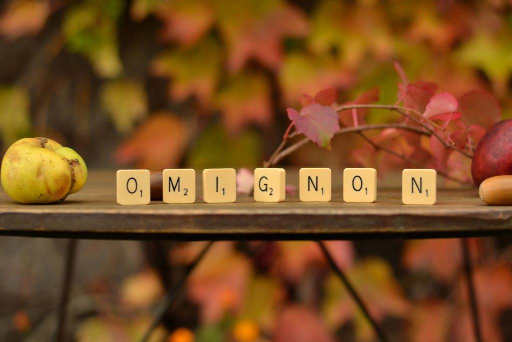 omignon plaisirs d'automne